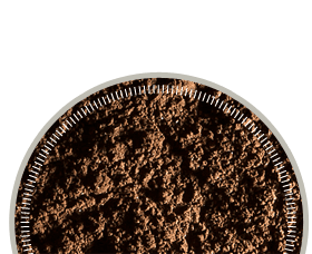 Photo of brown test dust in round dish
